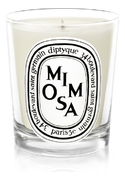 Diptyque Mimosa Candle
